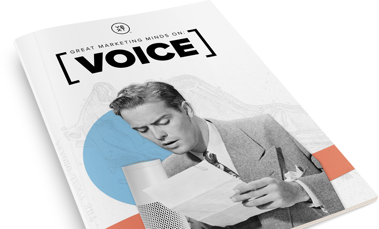 resources-publications-header-GMMonVoice2019-US-en